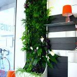 module végétal interieur