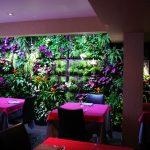 mur végétal intérieur - salle de restaurant