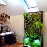 Mur végétal en aquaponie