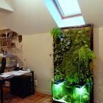 Mur végétal et aquaponie