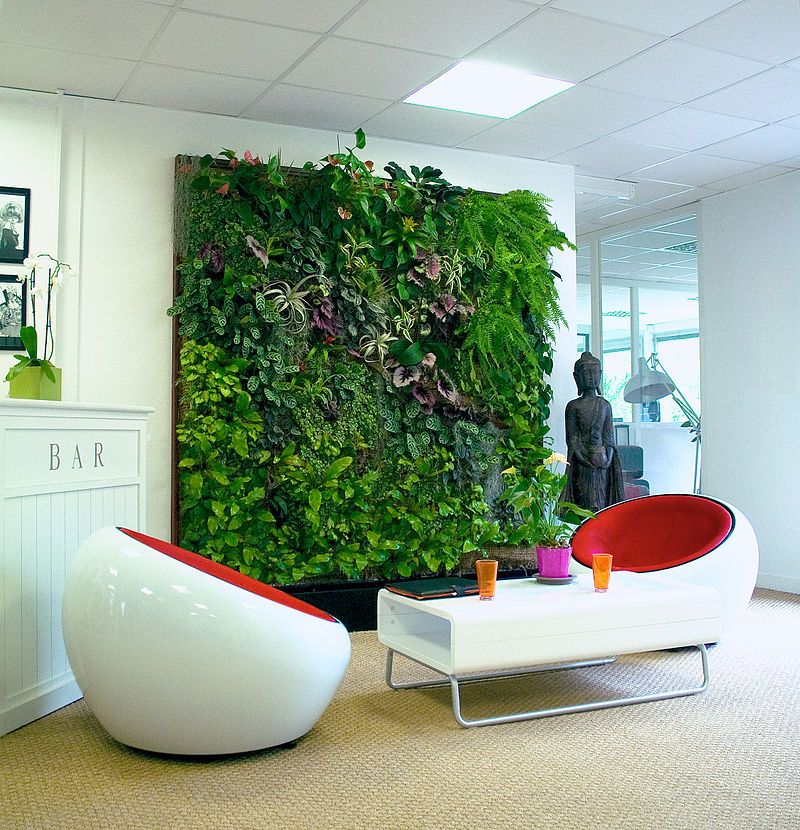Murs végétaux intérieur