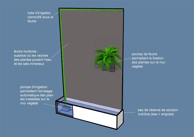 technique mur végétal